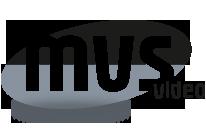 MVS-video